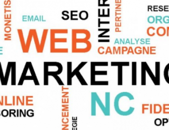 Le webmarketing en question